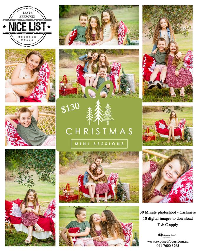 Christmas Mini outdoors copy